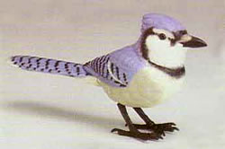 Blue jay electronic bird.