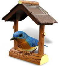 Solar powered eastern bluebird electronic bird.