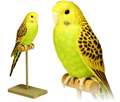 Yellow and green parakeet electronic bird.